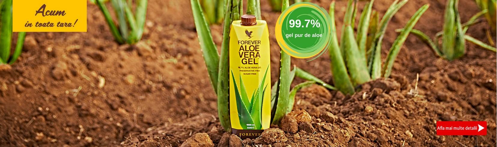Cu 99,7% gel din interiorul frunzei, noul Forever Aloe Vera Gel este mai aproape de natura ca niciodata.  Fara conservanti artificiali, fara zahar – doar mai multa Aloe vera de care sa te bucuri din plin
