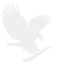 Energizant Forever FAB